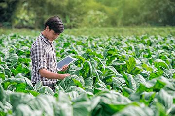 Agroquímicos e Outros